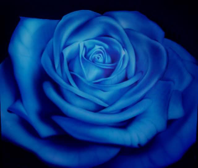 rosablu